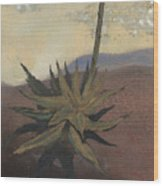 Agave Wood Print by Fred Chuang