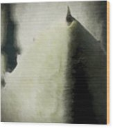 Agave Impression Four Wood Print