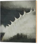 Agave Impression Two Wood Print