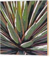Agave Impressions 1 Wood Print