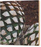 Agave Pineapples Wood Print