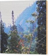 Agawa Canyon Wood Print