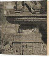 Aged And Worn Swan Statues On Rustic Cast Fountain Wood Print