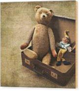 Aged Toys Wood Print