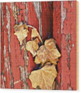Aging Together Barn  Wood Print