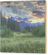 Agnew's Sunset Wood Print