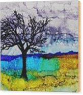 Changing Seasons - A 202 Wood Print