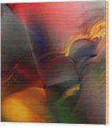 Ai041010 Wood Print