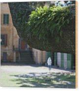 Aiken Rhett House Grounds Wood Print