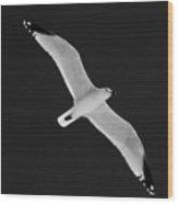 Air Angel Bw By Pedro Cardona Wood Print