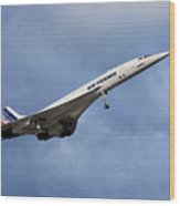 Air France Concorde 117 Wood Print