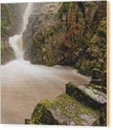 Aira Force High Water Level Wood Print