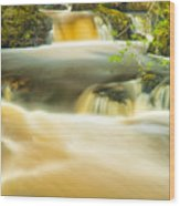Aira Force Wood Print