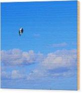 Airborne Kitesurfer  Wood Print