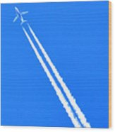 Airplane Thousands Of Feet In The Air Wood Print