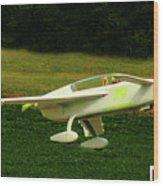 Airventure 79 Wood Print