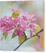 Airy Spring 1 Wood Print