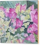 Ajisai Color-magenta Wood Print
