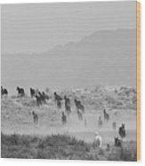 Akhal-teke Herd #2 Wood Print