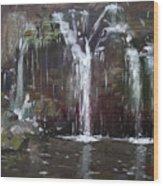 Akron Falls Wood Print