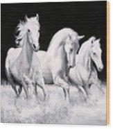 Al Galoppo  Nella Notte Wood Print
