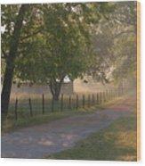 Alabama Country Road Wood Print by Don F  Bradford