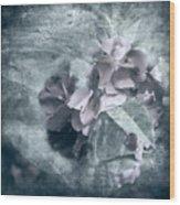 Alabaster Petals Wood Print