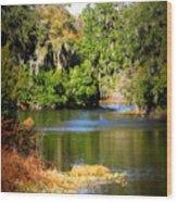 Alafia River Wood Print
