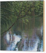Alafia River Reflection Wood Print