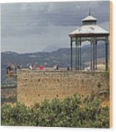 Alameda De Jose Antonio In Ronda Spain Wood Print