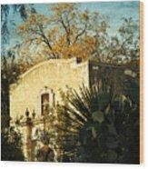 Alamo Mission Wood Print