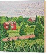 Aland Landscape Wood Print