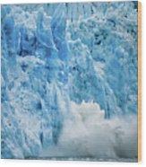 Alaska 4021 Wood Print