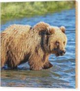 Alaska Bear Wood Print
