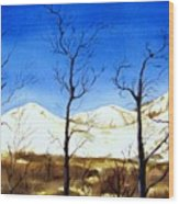 Alaska Blue Sky Day  Wood Print