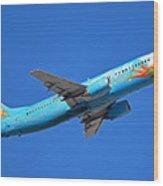 Alaska Boeing 737-490 N791as Tinker Bell Phoenix Sky Harbor January 12 2016 Wood Print