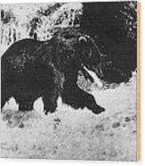 Alaska: Brown Bear Wood Print