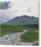 Alaska Denali National Park Landscape 1 Wood Print