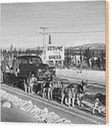 Alaska: Dog Sled, C1950 Wood Print