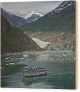 Alaska Endicott Glacier Wood Print
