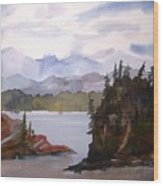 Alaska Inside Passage Wood Print