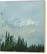 Alaska Range 2 Wood Print