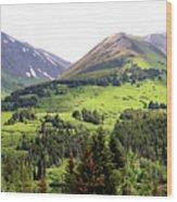 Alaska Scenery II Wood Print
