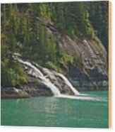Alaska Tracy Arm Wood Print