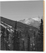 Alaska Wilderness Bw Wood Print