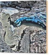 Alaskan Glacier Wood Print