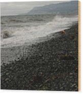 Alaskan Rock Beach Wood Print