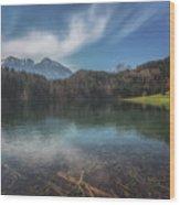 Alatsee Wood Print