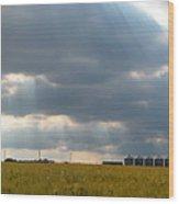 Alberta Wheat Field Wood Print by Stuart Turnbull