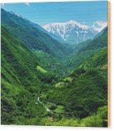 Alborz Green Wood Print